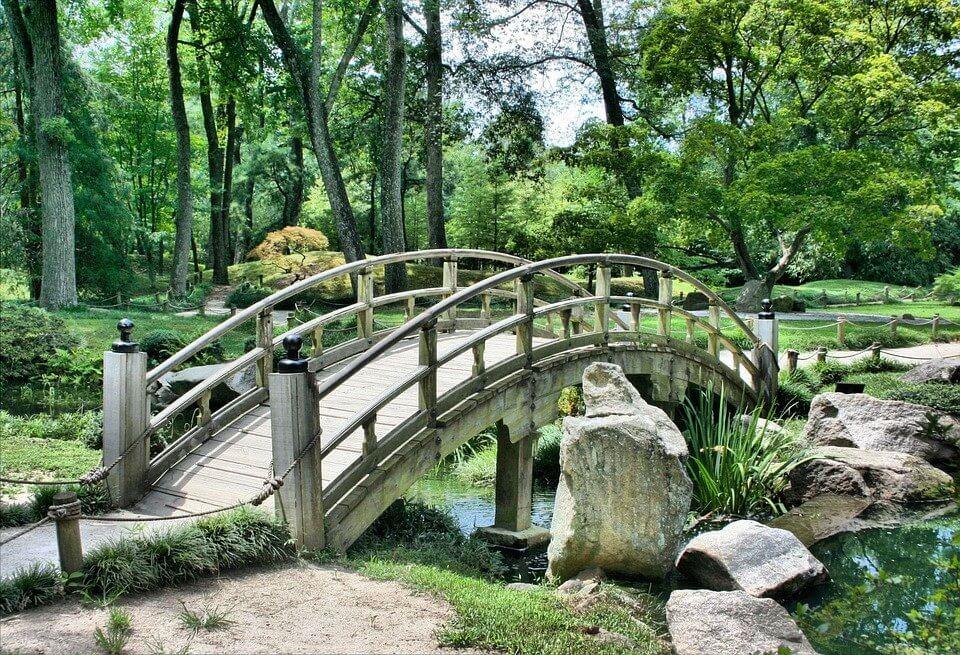 Piękny ogród w Stolicy